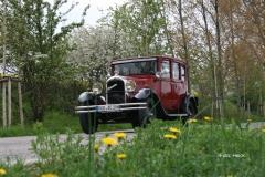 Rügenrundfahrt mit der Limousine